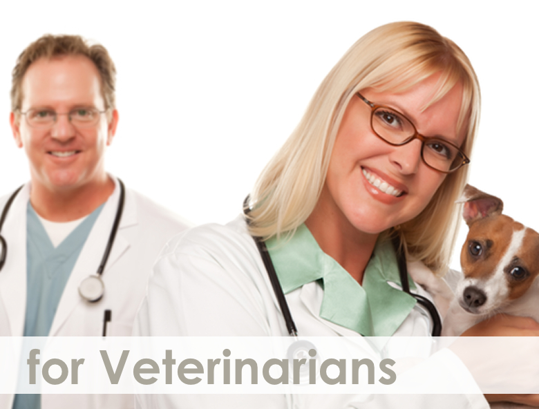 for Veterinarians